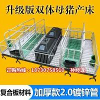供应猪用分娩栏价格 母猪产床尺寸 猪产床厂家直销