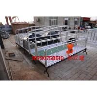 陕西猪产床厂家供应 双体猪产床价格 猪用分娩栏尺寸