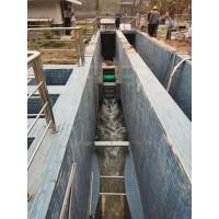 养殖污水处理厂明渠紫外线消毒模块设计效率高
